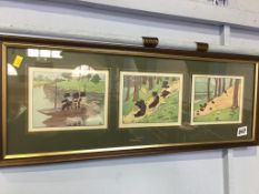 A Series of three framed prints of cats, 57 x 22cm