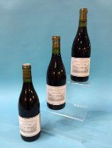 Frances Villard, Poivre Et Sol, 2009, Saint-Joseph (10 bottles)