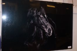 Framed and Mounted Print of a Horse