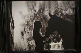 Silhouette Framed Photograph