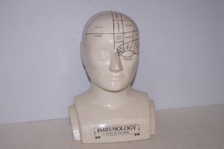 Ceramic Phrenology Head - 30cm h