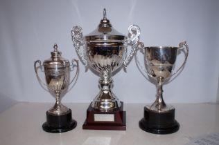Three Golfing Trophies, Tallest - 47cm h
