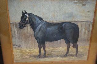 Edwardian Watercolour of a Horse 'Kitty' 1907 - 23