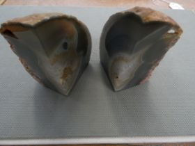 Pair of fossilised book ends? Height 9.5 cm