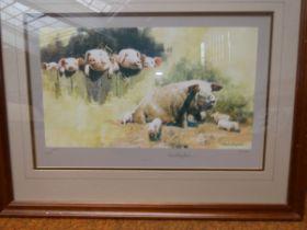 David shepherd signed limited edition print (Porke