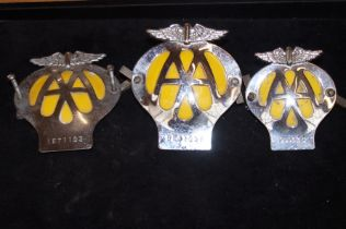 3x AA badges