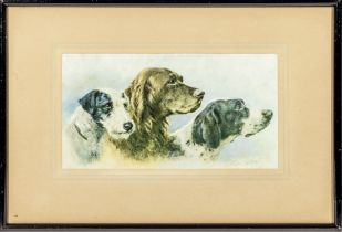 A framed print of three dogs, image size 16cm x 30cm