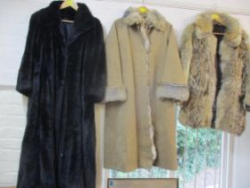 """A 1970's Bennetts of Edgware Ltd wolf fur hip length jacket with leather zipped front panel, 36"""""""