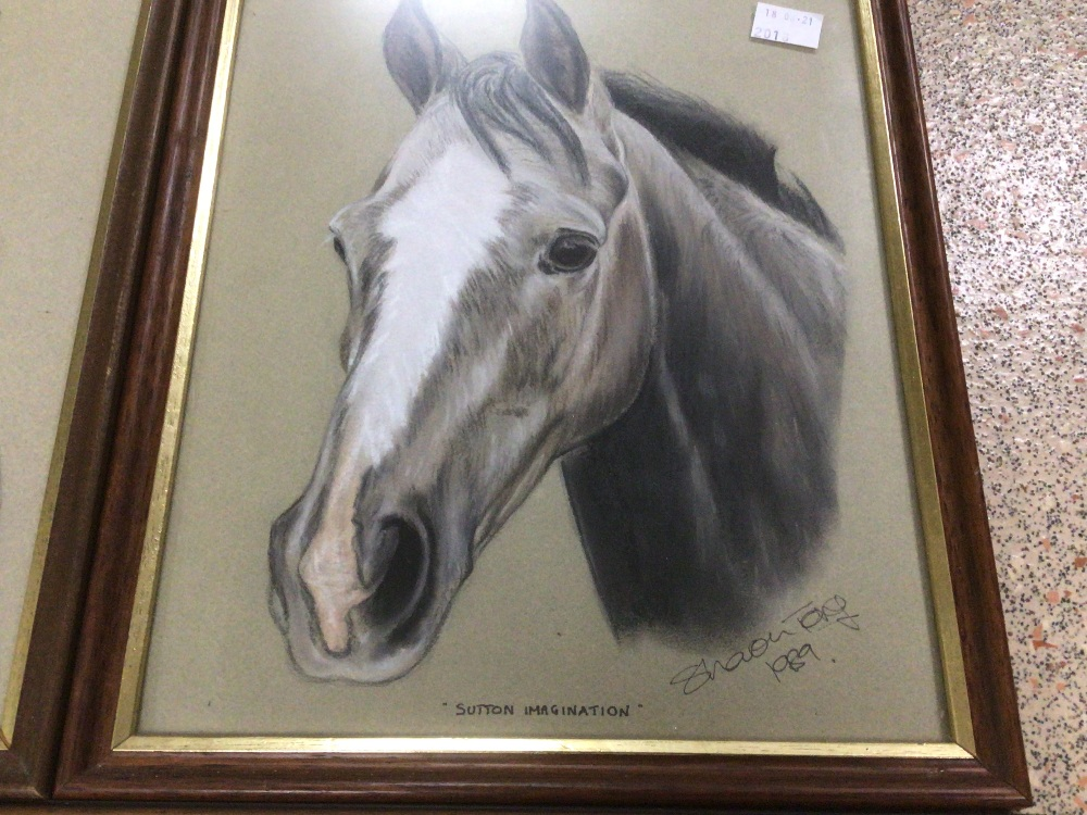 THREE FRAMED AND GLAZED WATERCOLOURS, LESLIE BENESON AND TWO BY SHARON TONG. ALL STUDIES OF HORSES - Image 4 of 5