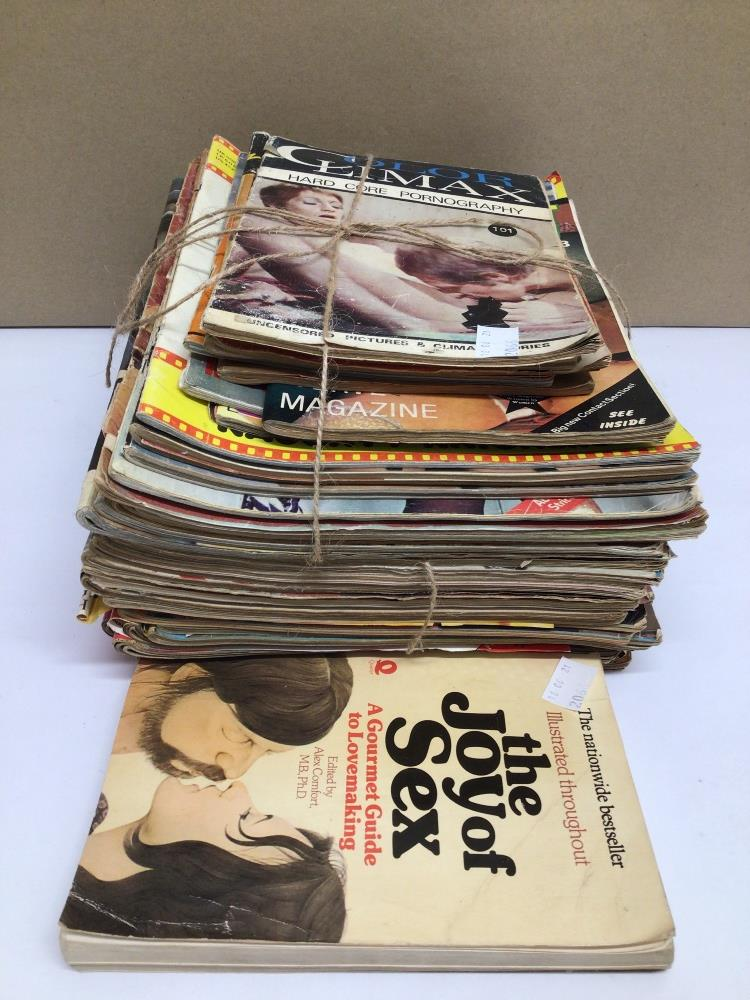 A QUANTITY OF VINTAGE ADULT MAGAZINES, CONSENT, COLOR CLIMAX AND MORE - Image 2 of 6