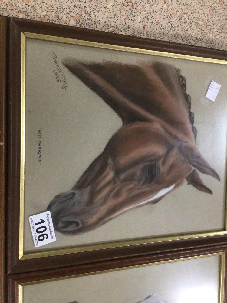 THREE FRAMED AND GLAZED WATERCOLOURS, LESLIE BENESON AND TWO BY SHARON TONG. ALL STUDIES OF HORSES - Image 5 of 5