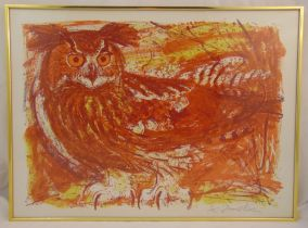 David Koster framed and glazed polychromatic limited edition lithographic print of an owl 8/75,