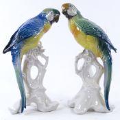 A pair of Karl Ens porcelain Parakeet bird figures, tallest 25.5 cm. Overall good condition, 1