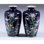 A Pair of Japanese Cloisonne Enamel Vases, Meiji Period, each decorated with spider chrysanthemums
