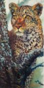 ROLF HARRIS (b.1930) ARTIST SIGNED LIMITED EDITION COLOUR PRINT ?Alert for Prey ?, (156/195), with