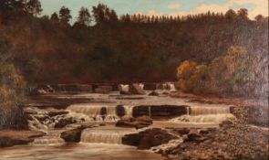 BRITISH SCHOOL (Late 19th Century) OIL PAINTING ON CANVAS A river landscape with waterfalls Unsigned