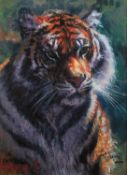 ROLF HARRIS (b.1930) ARTIST SIGNED LIMITED EDITION CANVAS COLOUR PRINT ON CANVAS ?Tiger in the Sun?,