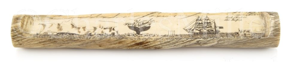 Ø A FINE AND UNUSUAL SECTION OF SCRIMSHAW DECORATED NARWHAL TUSK