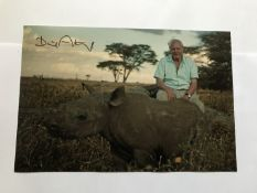 David Attenborough signed 12 x 8 inch colour photo with baby Rhino. Good condition. All signed