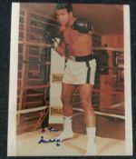 Muhammad Ali signed 10 x 8 inch colour photo in the ring, dedicated. Condition 8/10. Good Condition.