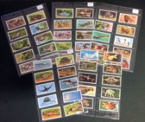Wonders of Wildlife Brooke Bond card collection full set of 50 cards. Good Condition. We combine