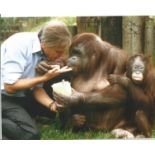 David Attenborough signed 10x8 colour image. David Attenborough is a national British Hero known for