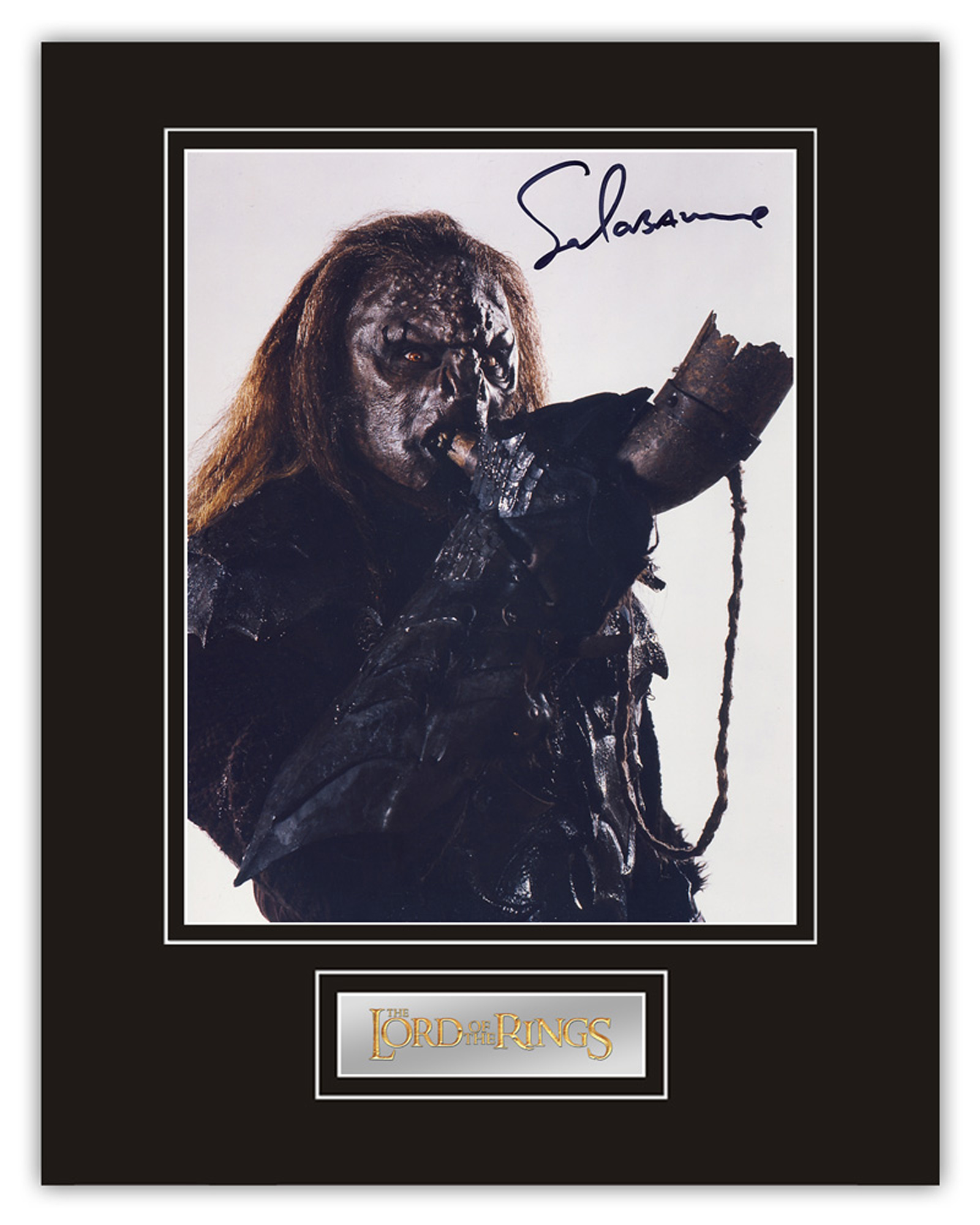 Stunning Display! Lord of the Rings Sala Baker hand signed professionally mounted display. This