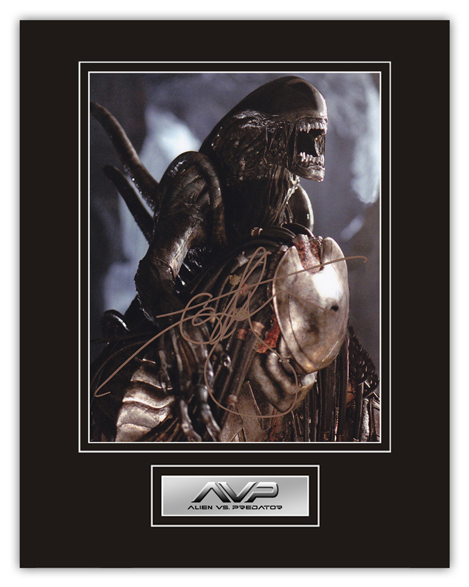 Stunning Display! Alien vs Predator Ian Whyte hand signed professionally mounted display. This