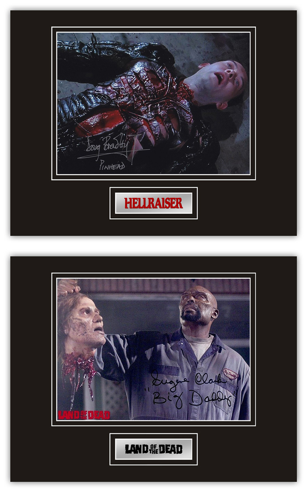 Set of 2 Stunning Displays! Horror hand signed professionally mounted displays. This beautiful set
