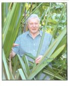 David Attenborough signed 10 x 8 inch colour photo, in rain forest. Good condition. All autographs