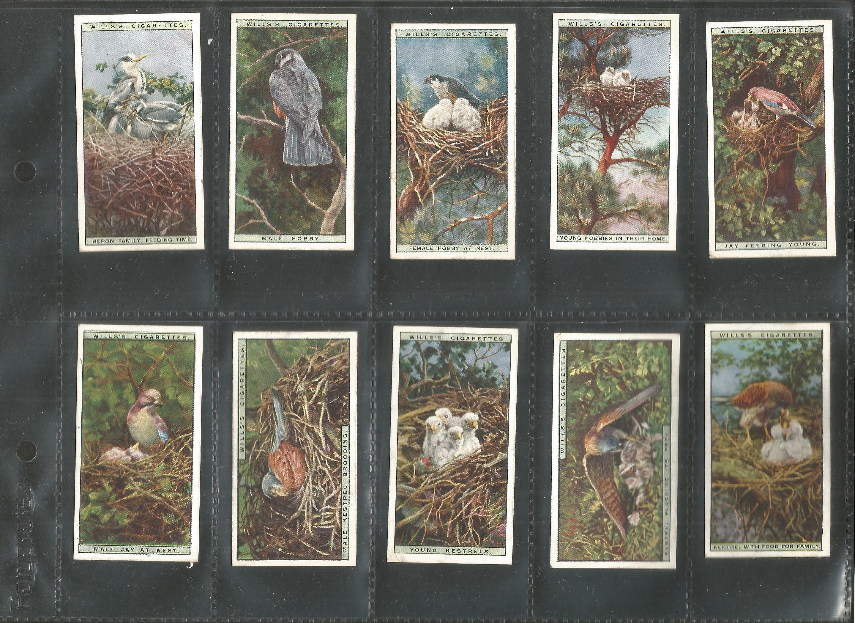 Cigarette card collection. 3 complete sets. Includes 1925 Flower culture in pots 50 cards, 1924 - Image 3 of 6