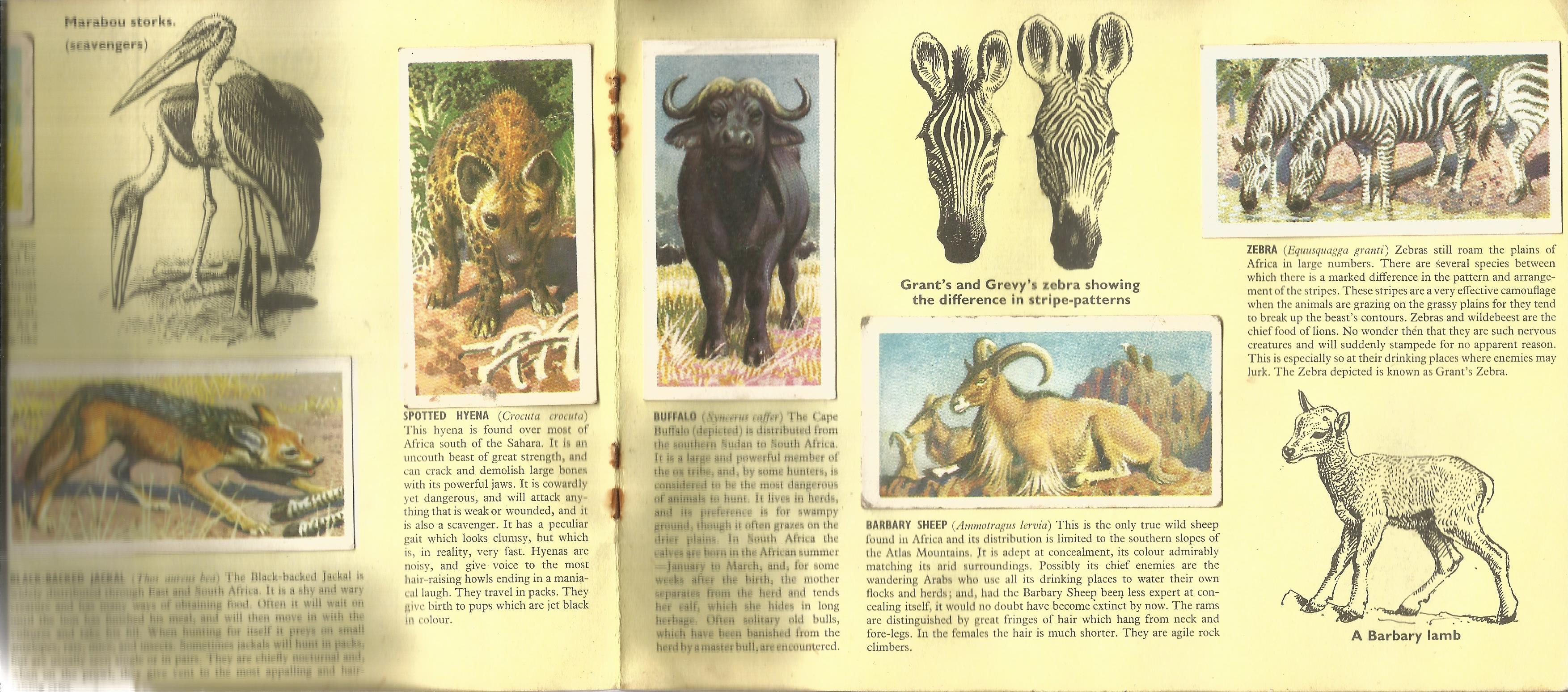 Assorted collection. Includes Brooke bond cigarette cards - African wild life, USA Fdc 20/7/69
