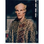 Blowout Sale! Babylon 5 Bill Blair hand signed 10x8 photo. This beautiful 10x8 hand signed photo