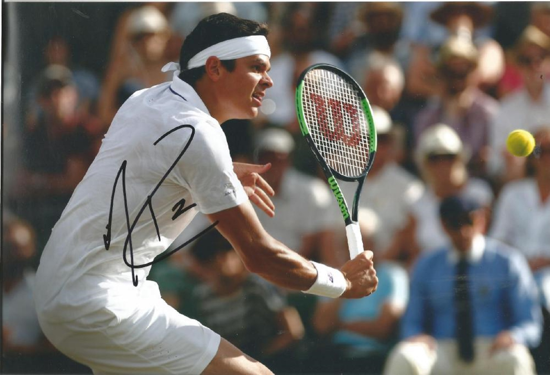 Tennis Milos Raonic signed 12x8 colour photo. Canadian professional tennis player. He reached a
