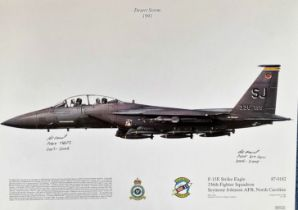 Desert Storm 1991 12x17 F-15E Strike Eagle 336th Fighter Squadron Seymour Johnson AFB, North