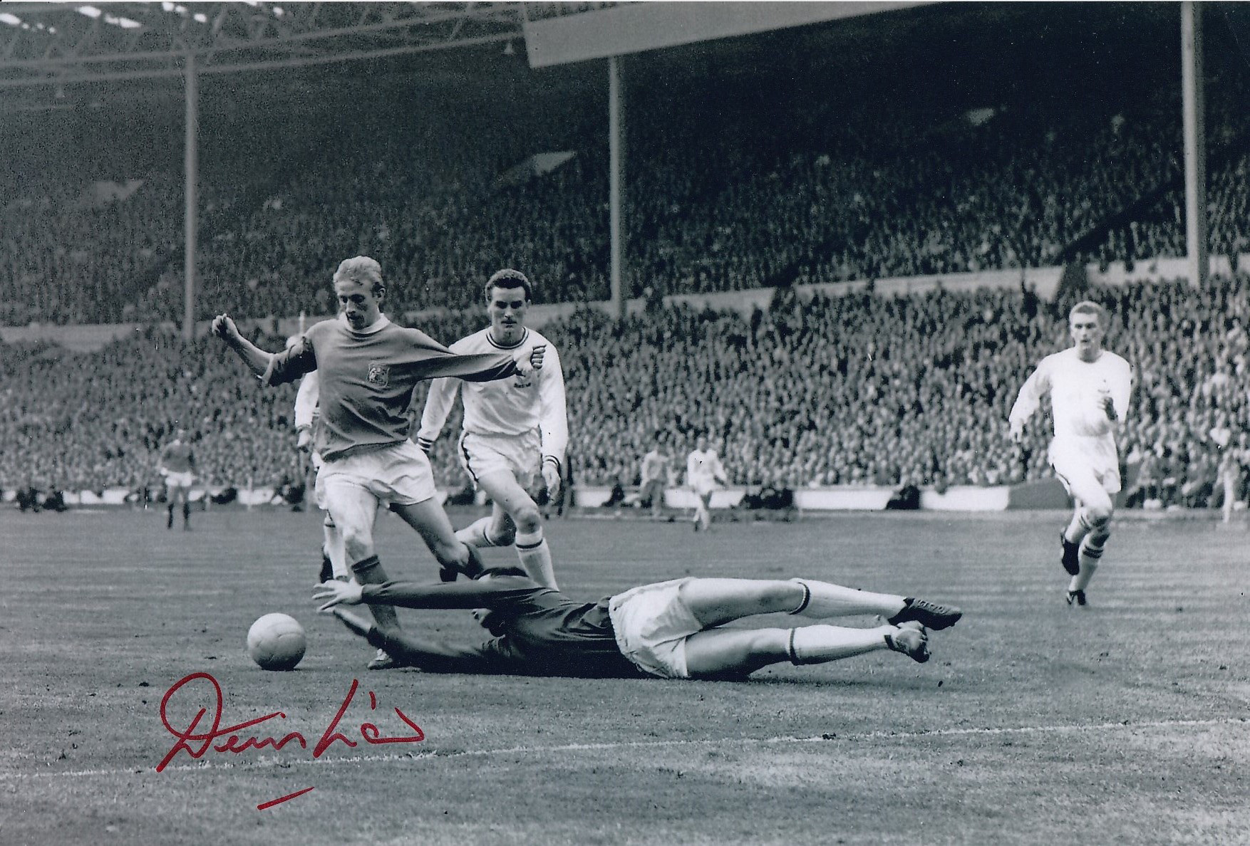 Autographed Denis Law 12 X 8 Photo B W, Depicting A Superb Image Showing Leicester City Goalkeeper
