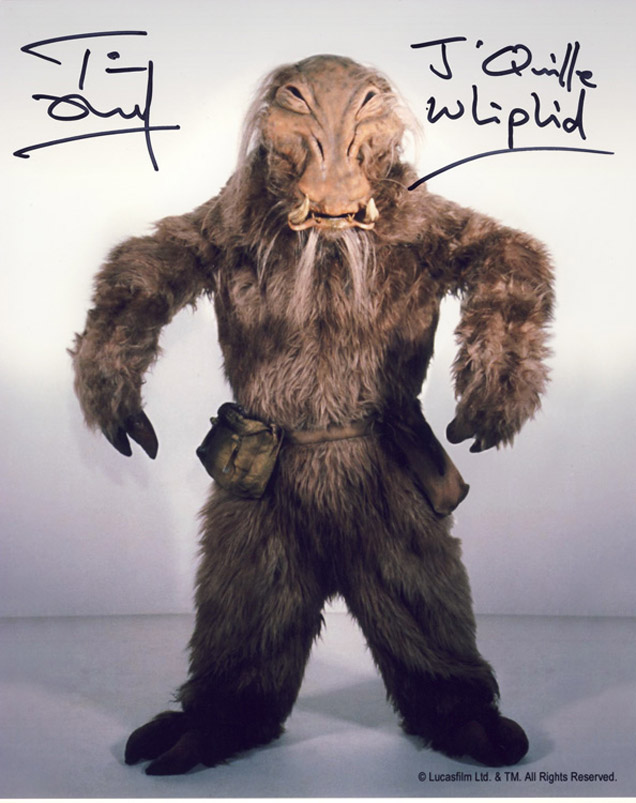 Blowout Sale! Lot of 10 Star Wars hand signed 10x8 photos. This beautiful lot of 10 hand signed - Image 3 of 11