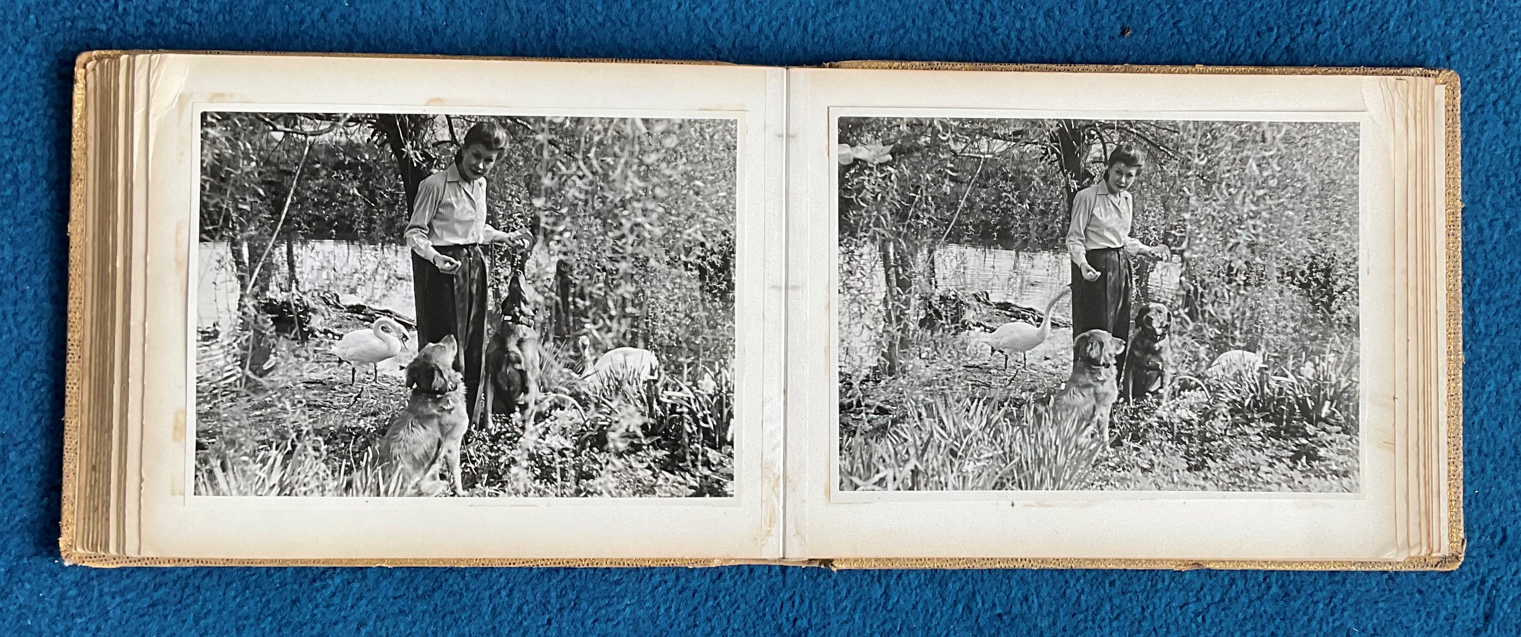 Sir Archibald McIndoe Family Photo Album plus 5 Hardback Books from His personal collection - Image 23 of 23