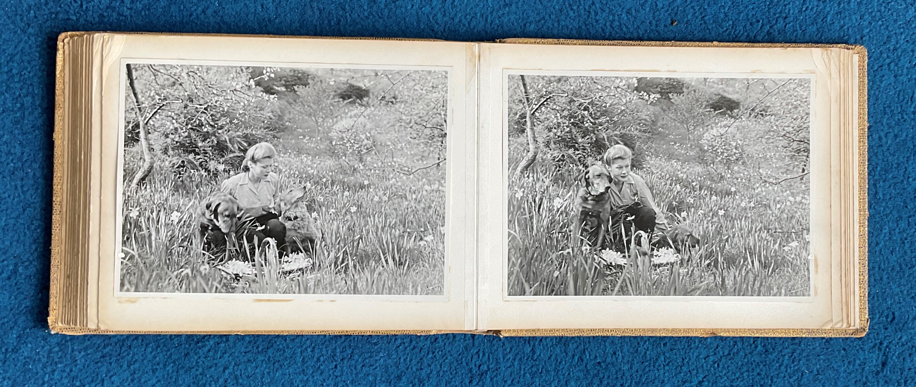 Sir Archibald McIndoe Family Photo Album plus 5 Hardback Books from His personal collection - Image 22 of 23