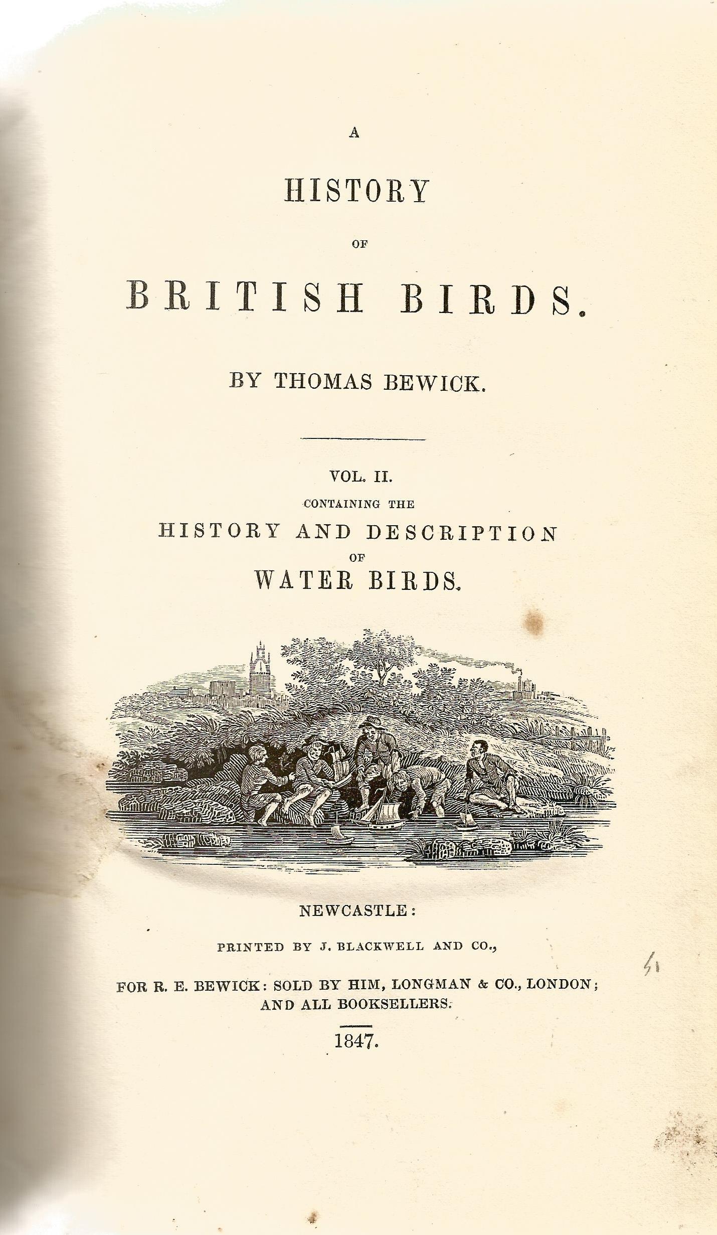 2 Hardback Books Bewick Birds A History of British Birds by Thomas Bewick 1847 Full Leather Bindings - Image 5 of 5
