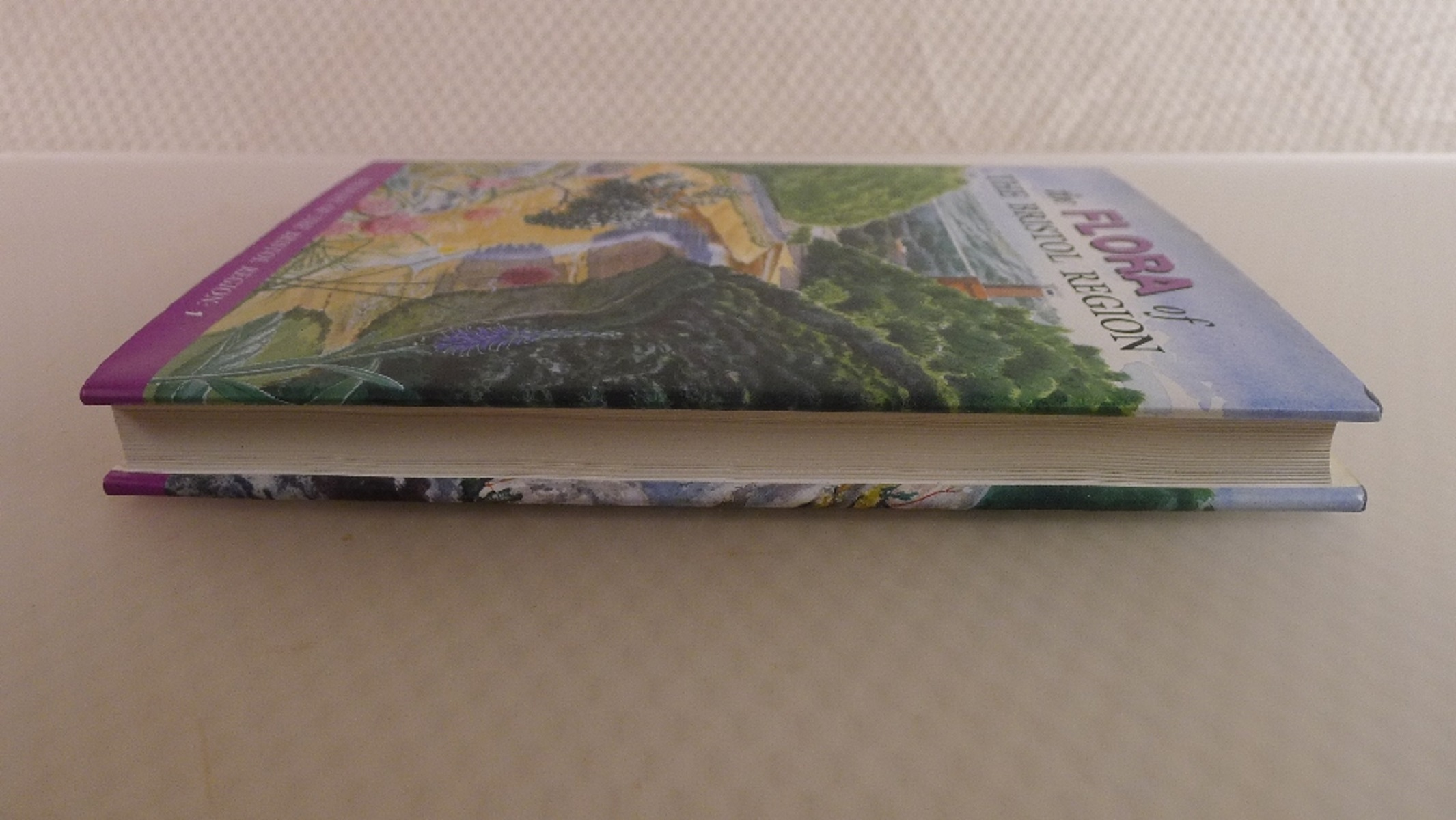 2 Books The Flora of The Bristol Region by Ian Green, Rupert Higgins, Clare Kitchen and Mark Kitchen - Image 6 of 8