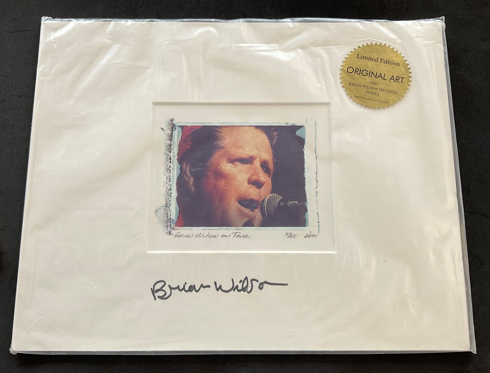 Singer and Musician Brian Wilson signed limited edition Original Art from 001 Brian Wilson on Tour