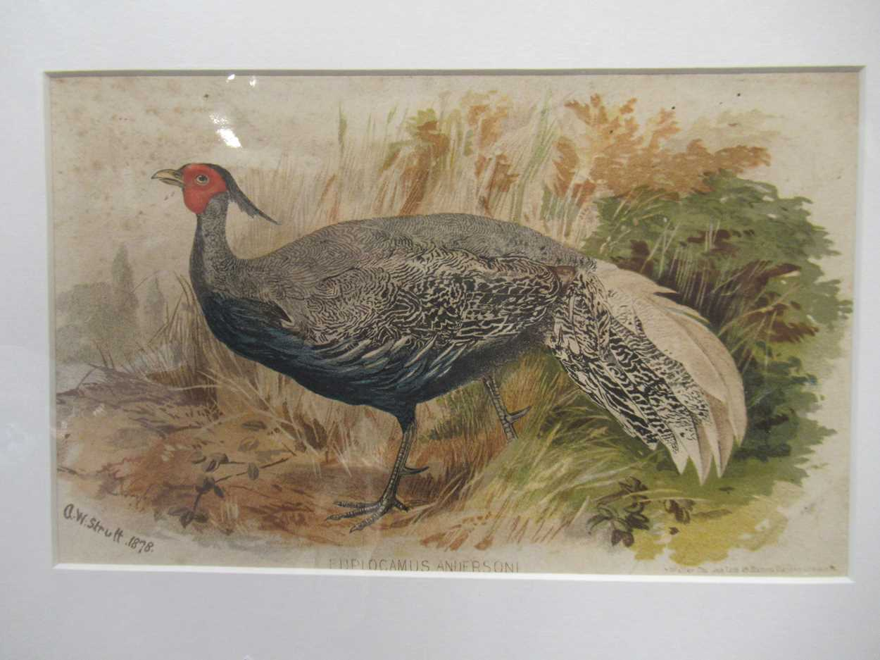 A group of five 19th and 20th century prints, to include: E J Harrington, Reunion, signed and - Image 3 of 9