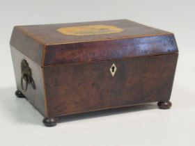 A Regency rosewood needlework box, the top with a classical scene of a mother and child, on bun feet