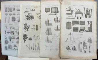 TAYLOR (Isaac) Collection of loose folio engraved illustrations, late 18th century, of natural