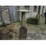 An antique granite mushroom-shaped Staddle Stone, overall 54in (137cm) high, above ground