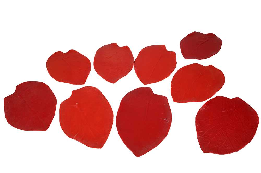 LUESMA & VEGA, SPAIN, A SET OF NINE RED GLASS LEAF FORM DISHES, 21ST CENTURY