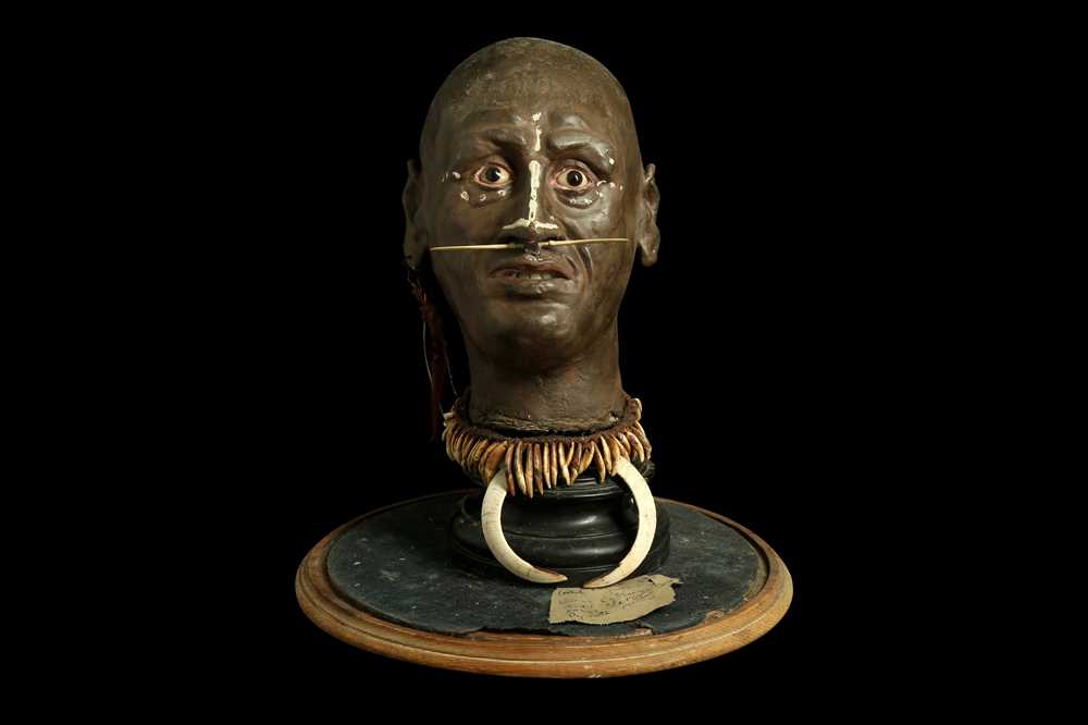 A MODEL OF A TRIBAL ELDERS' HEAD A NEW GUINEA TRIBAL HEAD UNDER A LARGE 19TH CENTURY GLASS DOME - Image 8 of 13