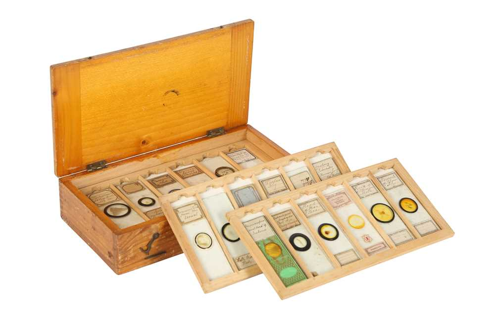 A COLLECTION OF 19TH AND 20TH CENTURY SPECIMEN MICROSCOPE SLIDES IN A PINE BOX