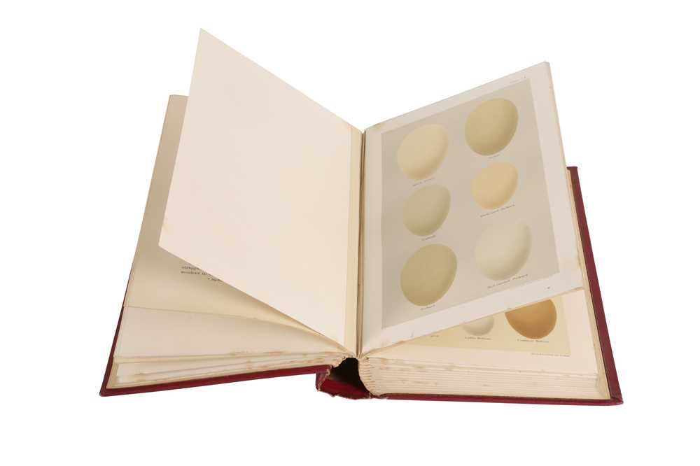 A LEATHER BOUND BOOK 'COLOURED FIGURES OF THE EGGS OF BRITISH BIRDS' BY HENRY SEEBOHM - Image 3 of 6